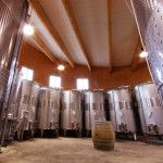 Wine Tasting directly from the tanks